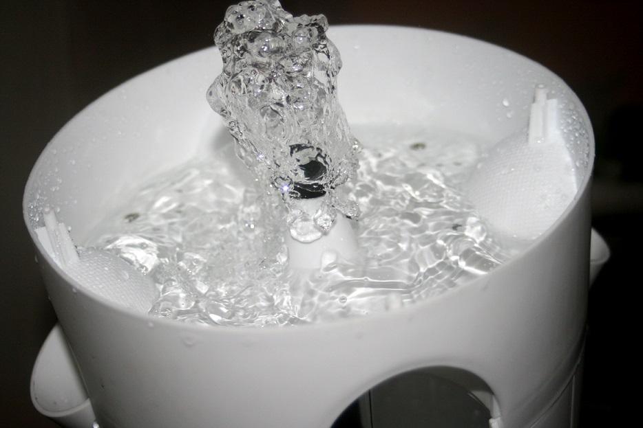 חשיבות המים בגידול הידרופוני