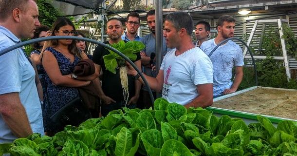 ירוק בעיר - סדנת הידרופוניקה