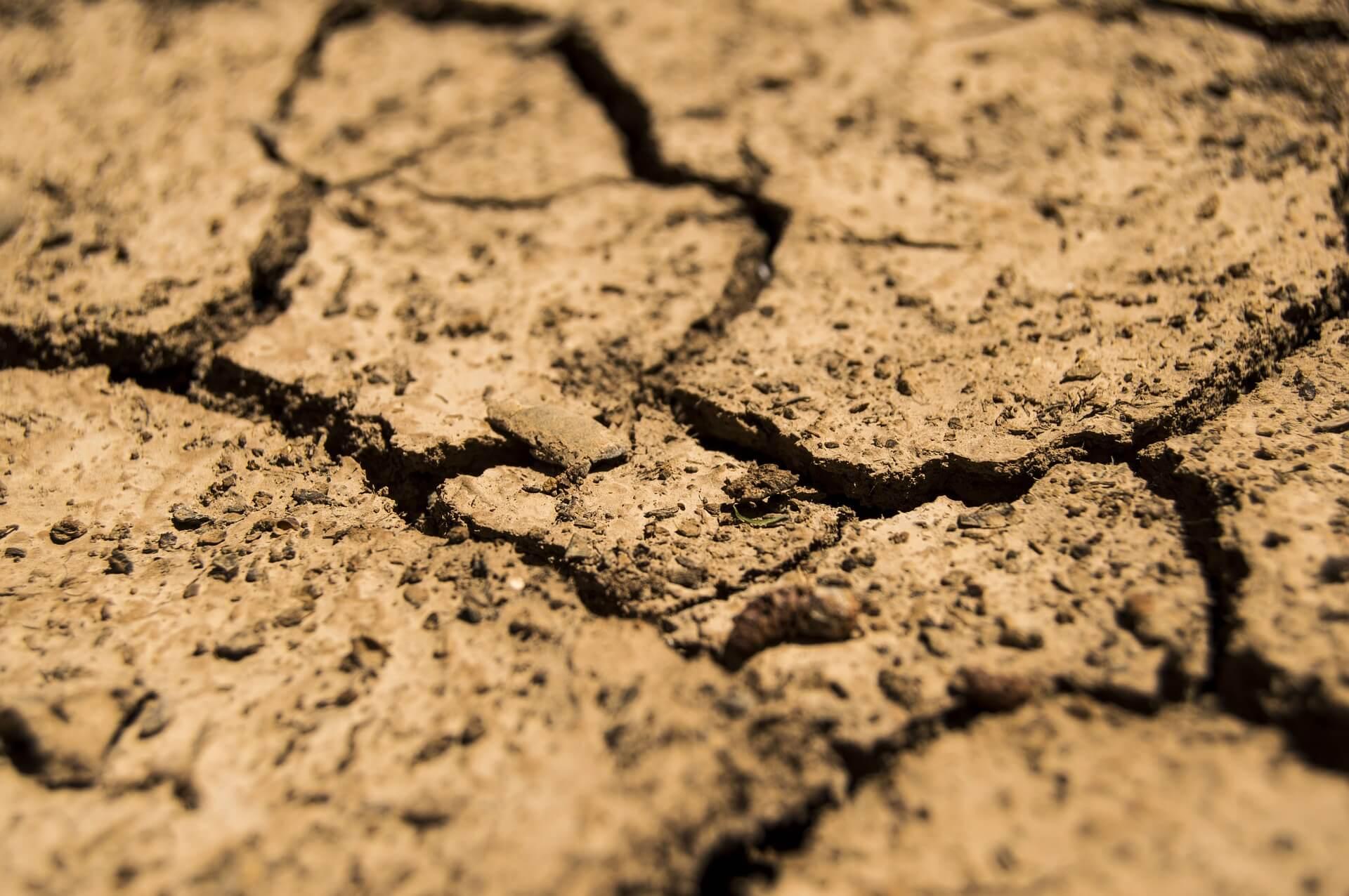 אדמה כבדה נחשבת דחוסה וקשה לעיבוד