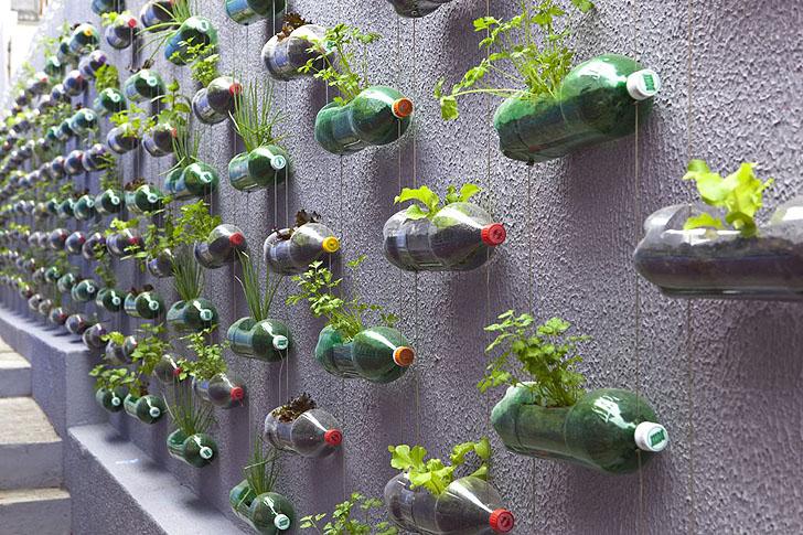 גינה אנכית מיחזור בקבוקים