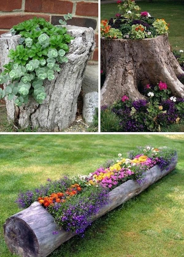רעיון לעיצוב הגינה