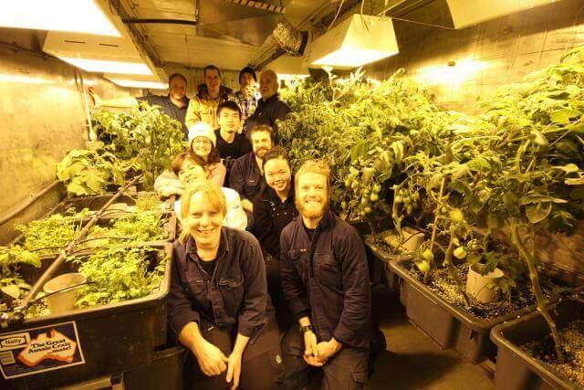 אנשי הצוות בחווה ההידרופונית באנטקרטיקה