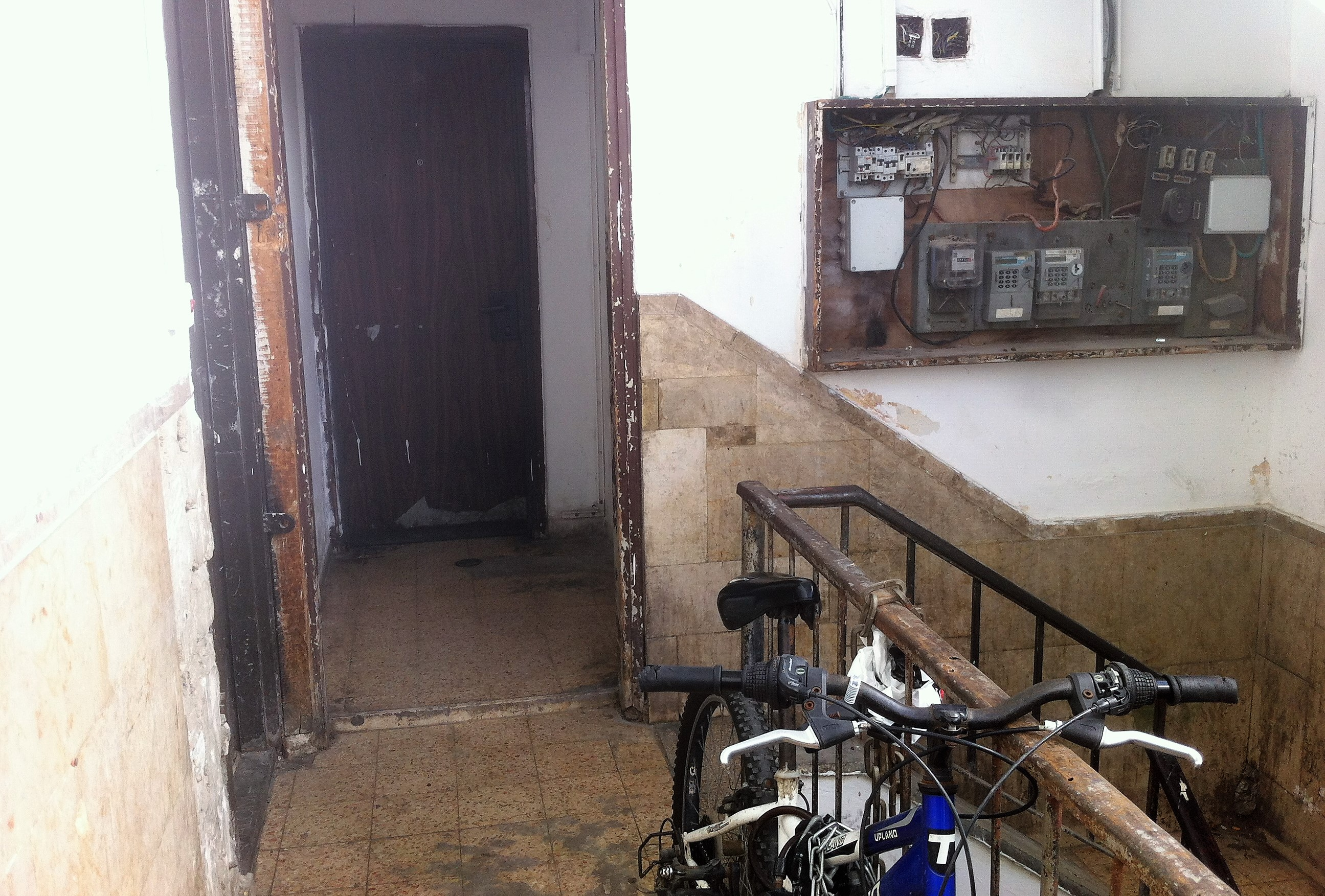 הידרופוניקה על גג בניין מהגרים בתל אביב
