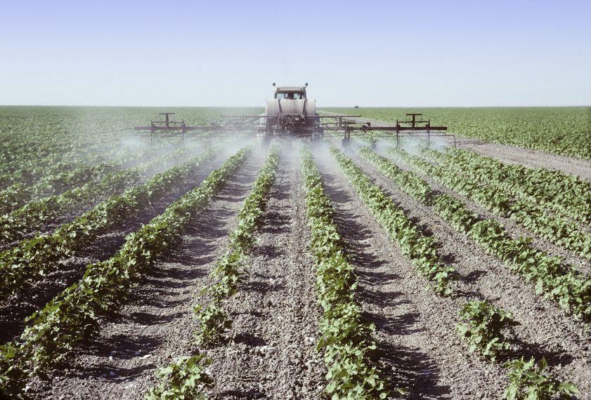 מחלות מריסוס הדברה בחקלאות