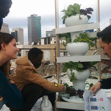 לימודי הידרופוניקה וחקלאות עירונית