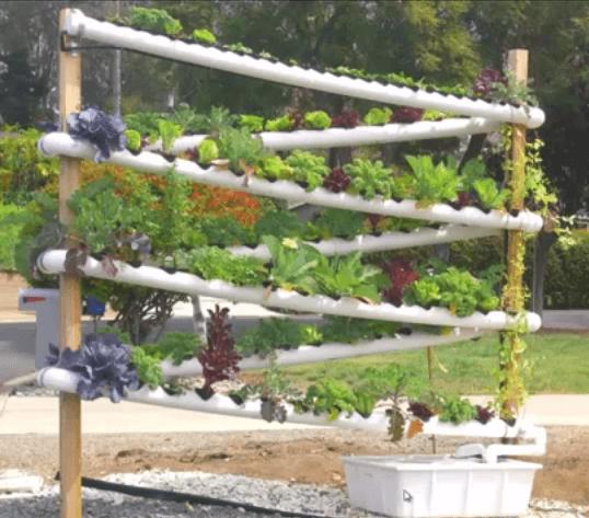ערכה הידרופונית לגידול הידרו בבית גינה טכנולוגית אקולוגי אורגני