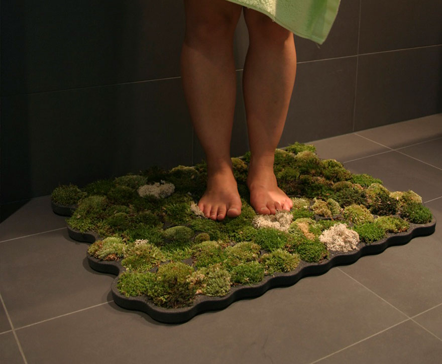שטיח טחב 2