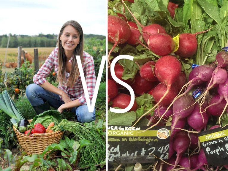 גידול ירקות בבית VS רכישה בסופר: 5 סיבות מעולות לגדל את המזון בעצמך