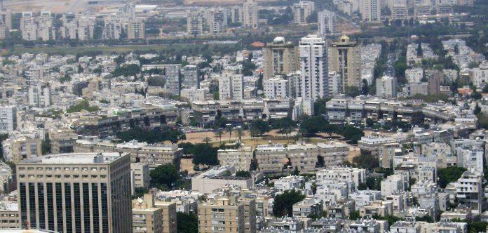 כריתת מעל 100 עצים בכיכר המדינה כדי לבנות בניינים