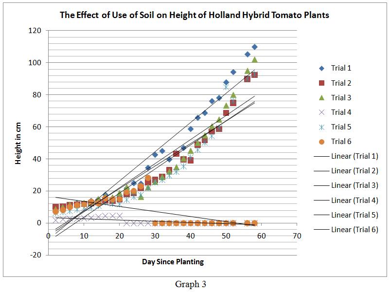 גרף גידול עגבניות באדמה