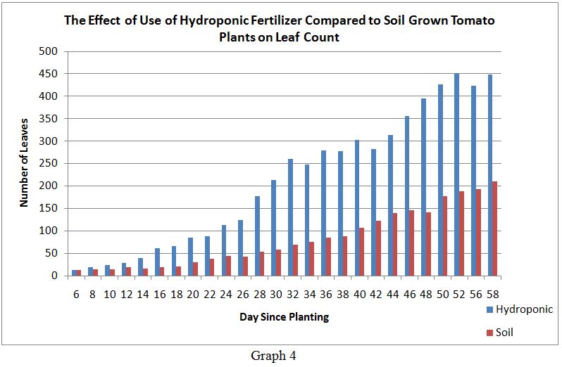 ספירת עלים בעגבניה הידרופונית לעומת שגודלה באדמה