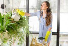אישה משקה צמחים בביתה